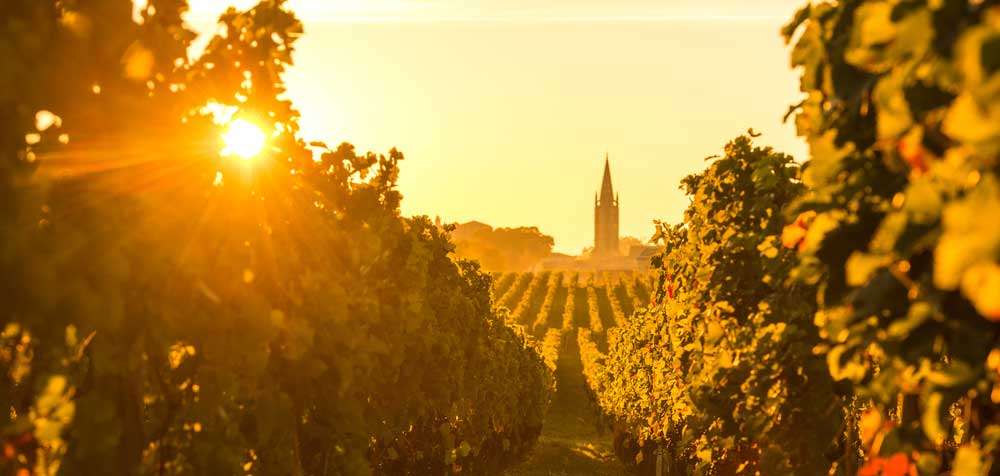 Bordeaux - Moulis